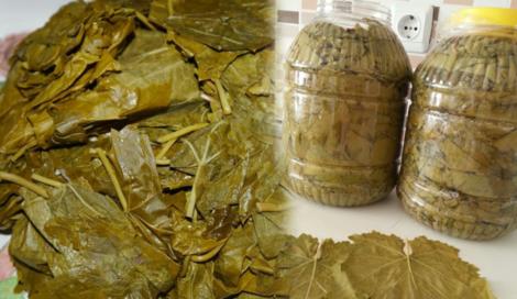 yaprak salamura yapımı
